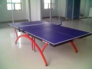 红双喜T2828乒乓球台